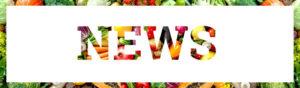 banner-news-1-848x250